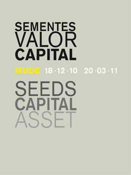 Sementes Valor Capital